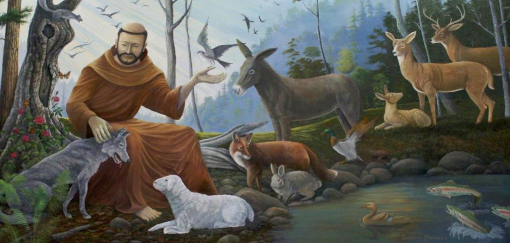 Our First Blessing of Animals in Celebration of the Feast of St ...
